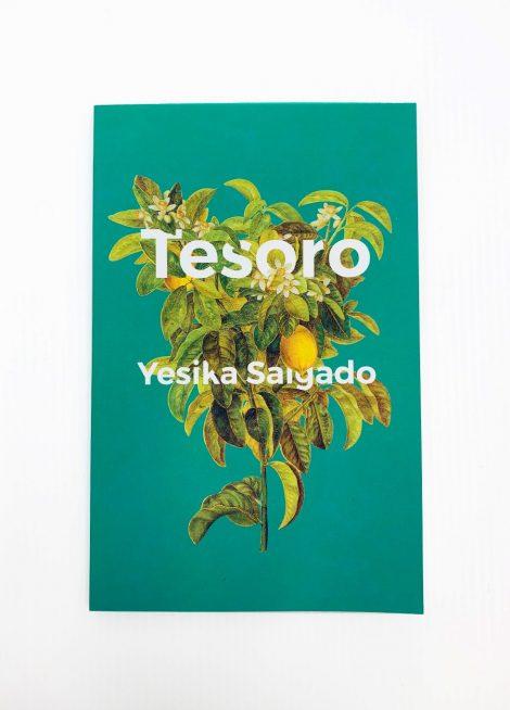 TesoroBook-1.jpg